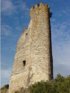 torre_staperpetuagaya