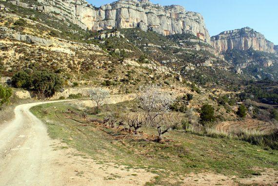 El Montsant. Foto: Carles X. Cabós