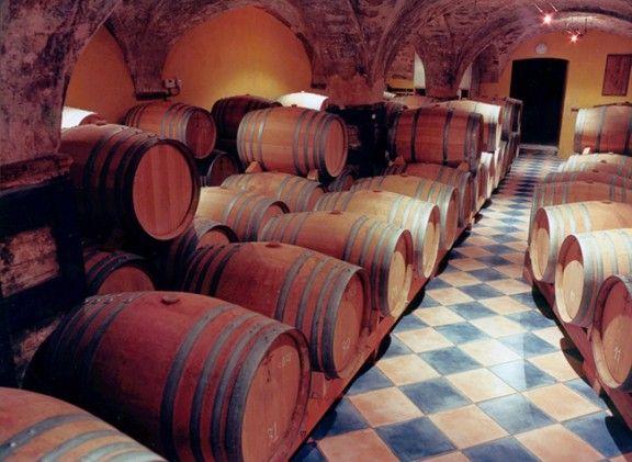 Una imatge de la sala de bótes del celler Vall Llach. (Foto: Vadevi.cat)