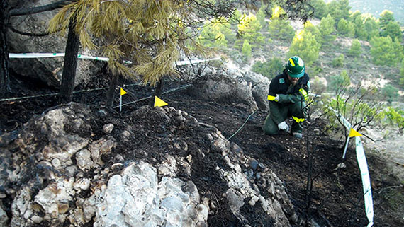 Els focus de l'incendi han estat localitzats i delimitats. Foto: Cos d'Agents Rurals.